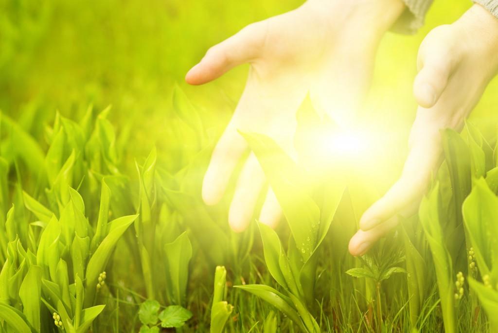 Conhecendo a vontade de Deus para prosperar