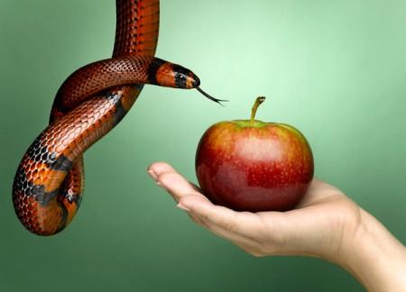 A tentação e os sentidos