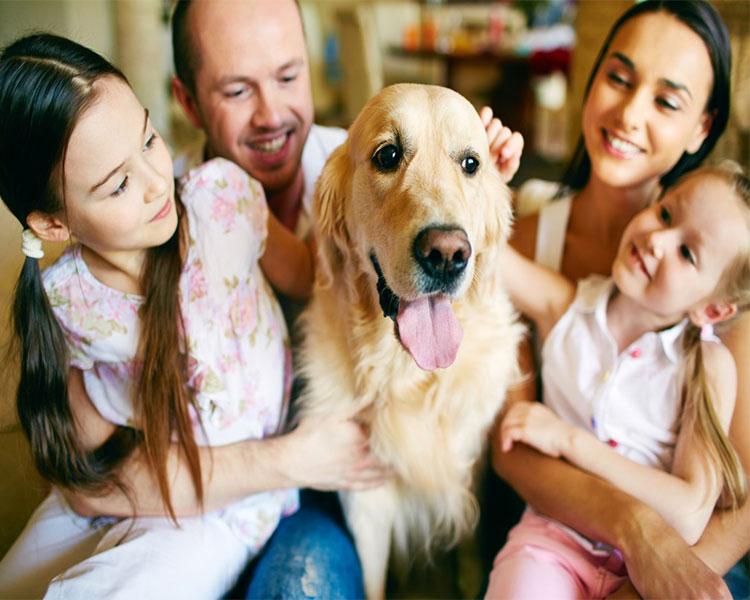 Como transformar sua família