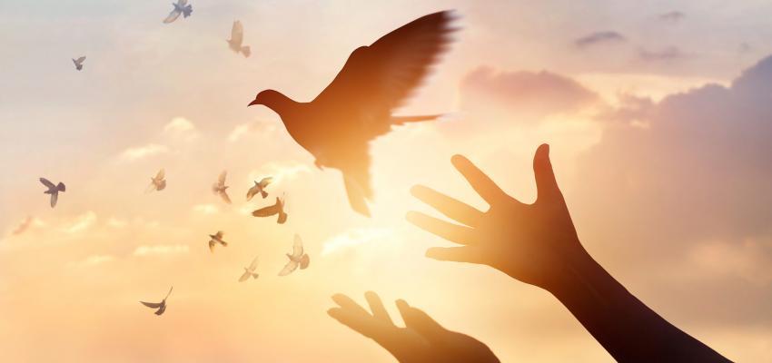 Espírito Santo, o Espírito da verdade