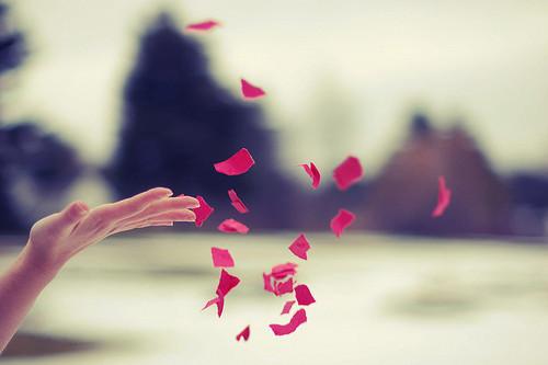 Perdoar ou reter perdão?