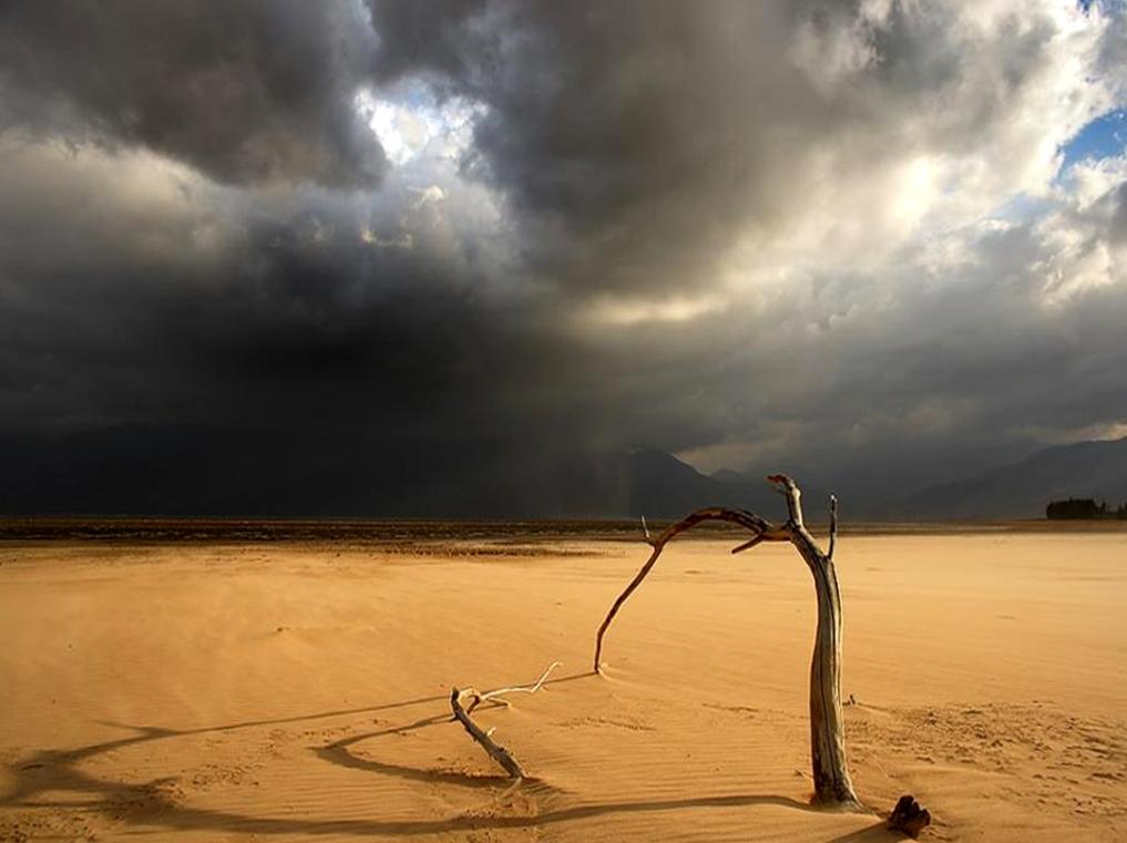 Por que passamos pelo deserto?